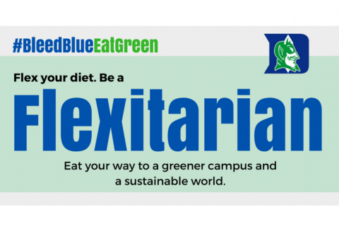 Photo of Bleed Blue, Eat Green Flyer