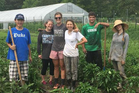 students working on the farm