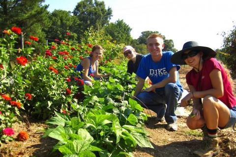 photo of staff and students at Duke Campus Farm