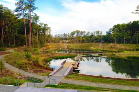 photo of Duke's water reclamation pond