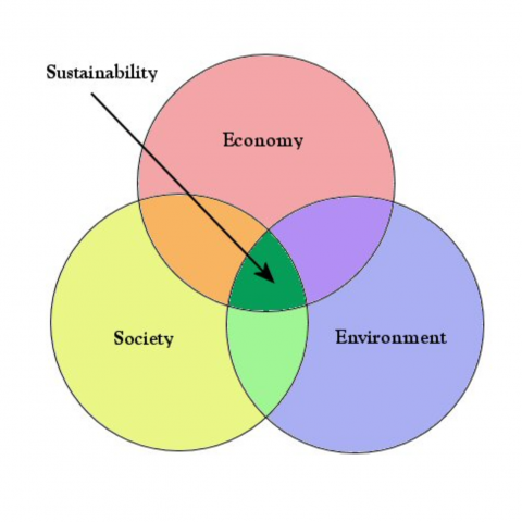 Graphic of the three circles of Duke's Sustainability venn diagram. The three circles represent Society, Economy, and Environment.