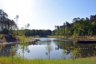 Reclamation Pond picture